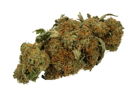 Effects of cannabis   Wikipedia