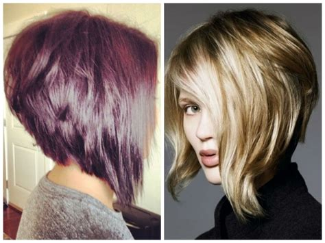 bob haircuts same length at back back view of inverted bob haircuts blackhairstylecuts com