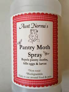 and the budget how to get rid of pantry moths