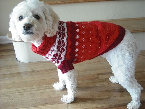 free pattern dog sweater miss julia s patterns free patterns everything for dogs
