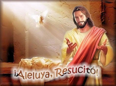 ver imagenes de jesucristo resucitado im 225 genes de galilea aleluya resucit 243 jes 250 s im 225 genes