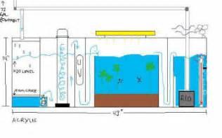 Make A Refugium Sump Wet Dry Filter Dsc04149 Custom Jpg on Pinterest