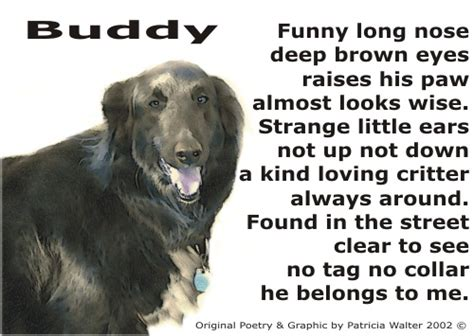 puppy poems poems pets