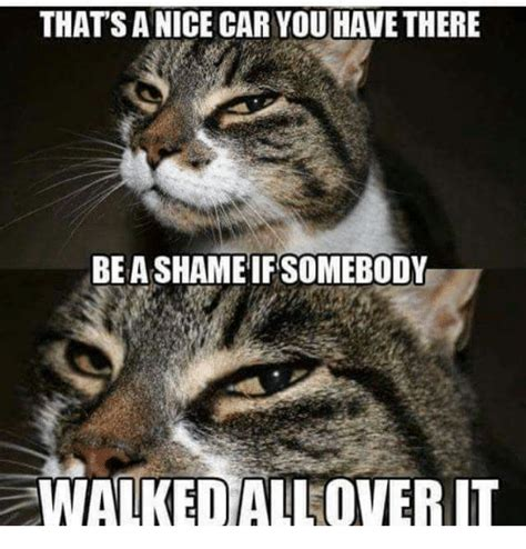 Nice Car Meme - that s a nice car you have there be a shameifsomebody