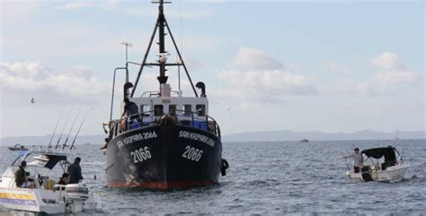 cameras on fishing boats nz snapper 1 commercial fishing to be monitored the fishing
