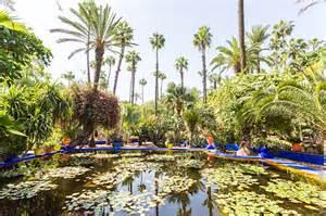visiter le jardin majorelle 224 marrakech birds