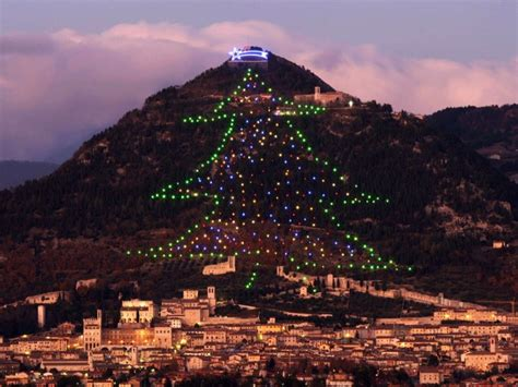 how to mount a chrismas tree all the days ordained the most trees