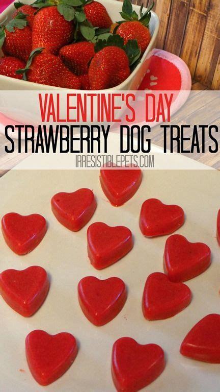 strawberries for dogs best 25 frozen treats ideas on