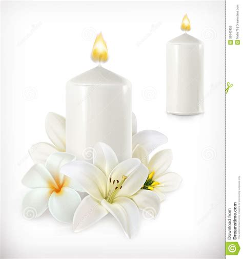 Candle Light Aromatherapy Nede02 White white candle and white flowers stock vector illustration