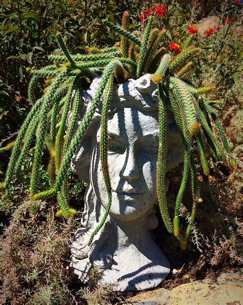medusa planter 554 best images about head planters on pinterest gardens