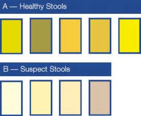 yellow stool color b l o o d haemolytic disease of newborn hdn