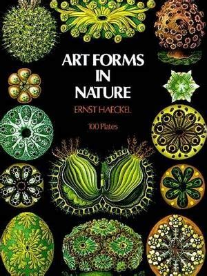 art forms in nature 3791319906 art forms in nature ernst haeckel 9780486229874