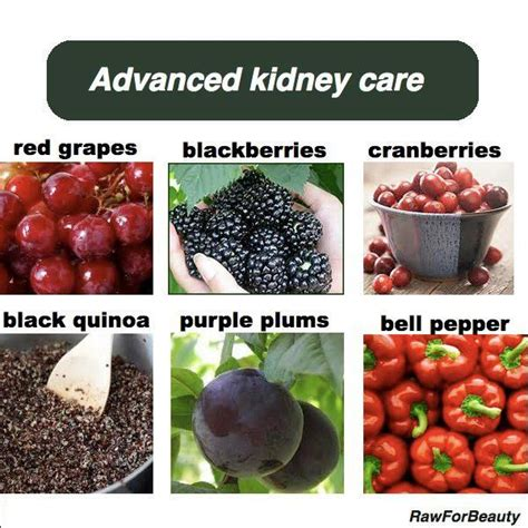 Kidney Detox Foods by Foods For The Kidneys Kidney Health