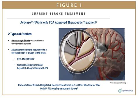 Herbal Carefor Stroke therapeutic focus ischemic stroke treatment beyond the 3 hours articles