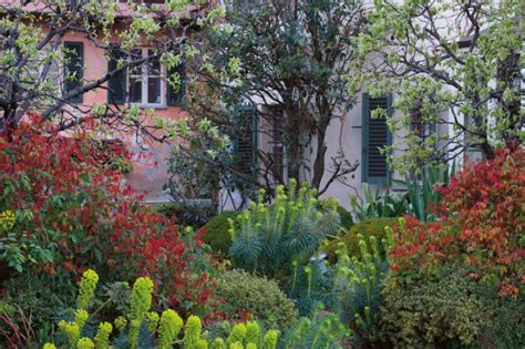 rospi in giardino paolo pejrone racconta il suo giardino polifonico tra