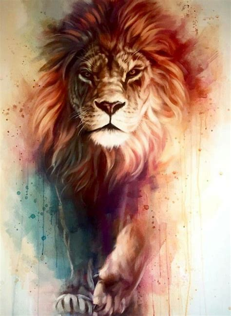 lion wallpaper pinterest lion iphone wallpaper hd best wallpaper hd wallpaper