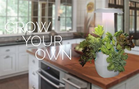 Countertop Hydroponics by Ideas Gift Idea Grow Your Own Countertop Hydroponic