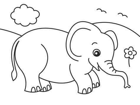 unique elephant coloring pages cartoon elephant animals coloring pages for kids beautiful