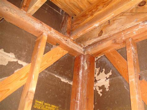 Termites In Furniture by Termite Damage Dallas Dallas Pest Dallas Pest Service Dallas