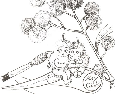 coloring pages of australian flowers wattles in australia