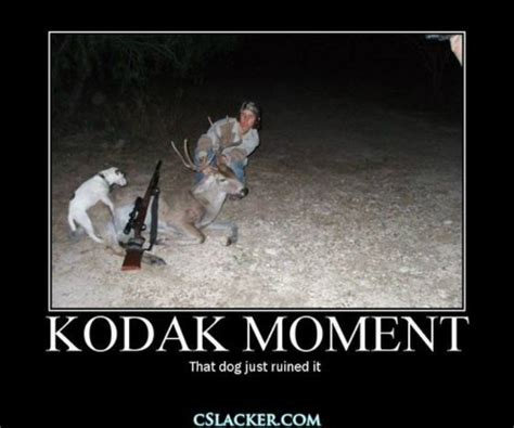 Meme Hunter - 30 most funniest hunting meme pictures and images