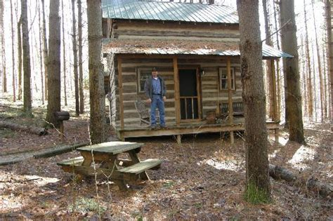 Frontier Cabins Hocking by Pine Trees All Around Picture Of Hocking Frontier