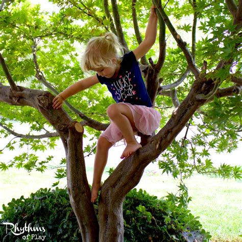 climbing tree get outside connect climb a tree rhythms of play