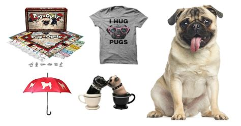 all things pug 25 things all pug need to