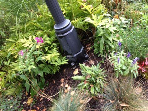 Garten Gras Pflanzen garten gras pflanzen natur blume gras pflanze garten