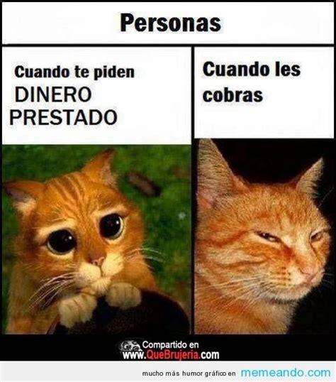 Memes En Espaã Ol Para Facebook - memes para facebook en espa 241 ol gt gt memeando com
