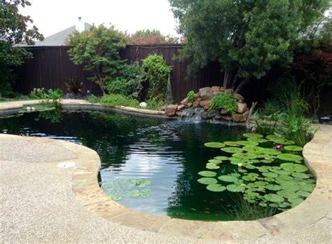 pool anlegen gartenteich im pool anlegen eine umweltfreundliche idee