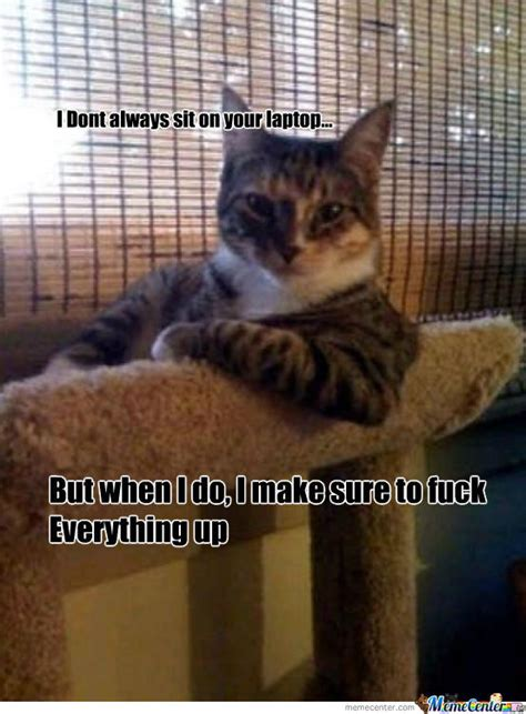 Bad Kitty Meme - bad kitty by hightech meme center