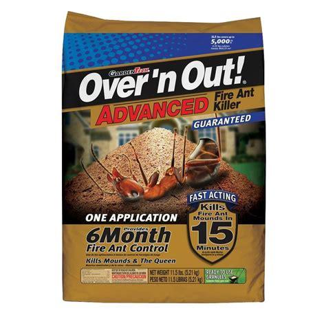 kitchen safe ant killer n out advanced 11 5 lb ant killer 100524398
