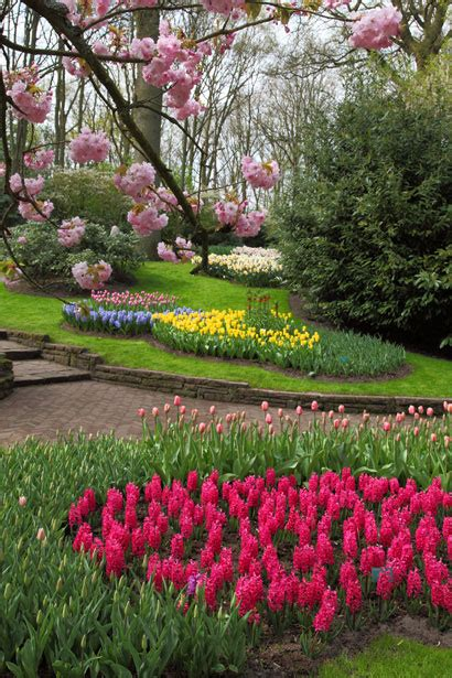 spring flower garden spring flower garden free stock photo public domain pictures
