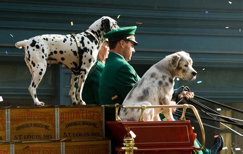 budweiser puppy budweiser bowl commercials