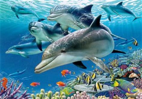 fondo con delfines   El Mundo de Dauphin de ZOE   Gabitos