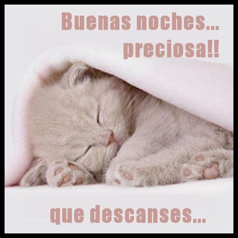 imagenes buenas noches preciosa tarjetas virtuales buenas noches preciosa que descanses