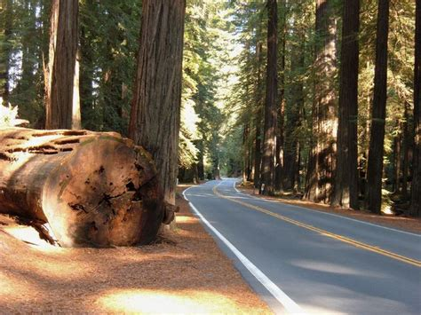 most scenic drives in america the 20 most scenic drives in america