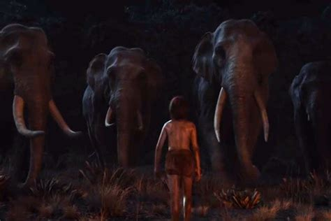 celebrity jungle live disney releases first trailer for the jungle book live