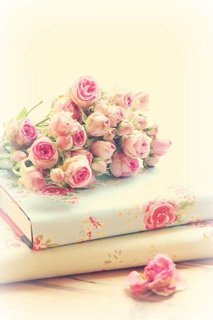 roses books pink books roses beautiful we it book