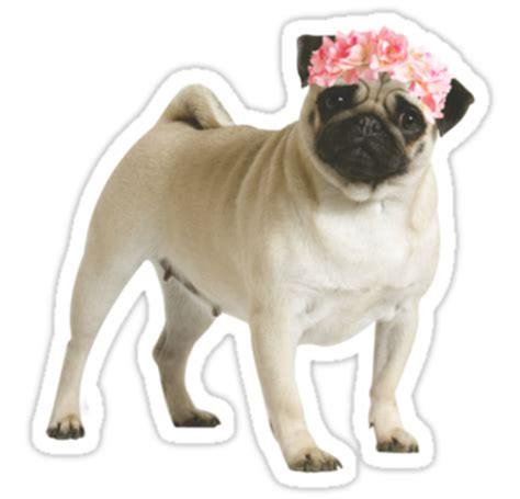 pug sticker quot pug quot stickers by ohsnap redbubble