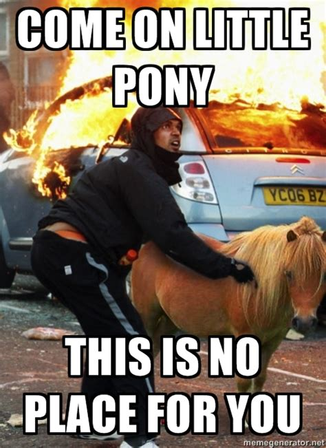 Ponies Meme - riot pony funny pictures quotes pics photos images