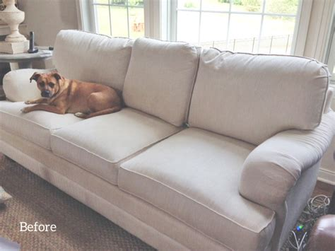 pet friendly couch sofa slipcover the slipcover maker