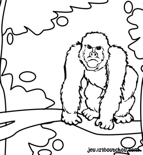 Nos Jeux De Coloriage Gorille 224 Imprimer Gratuit