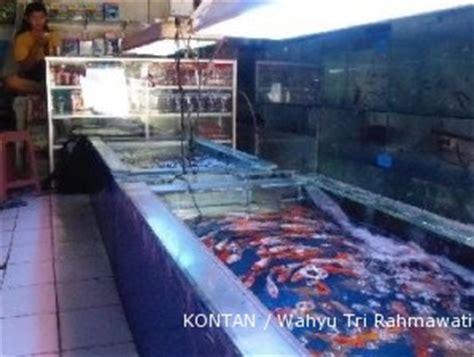 Lu Hias Berdiri sentra ikan yang berharap gedung pasar cepat selesai 1