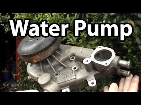 toyota corolla water pump replacement tutorial | funnycat.tv