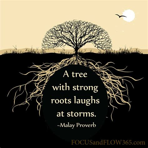 tree quotes quot a tree with strong roots laughs at storms quot