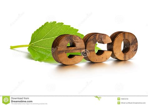 eco friendly wood eco friendly word and green leaf royalty free stock photos