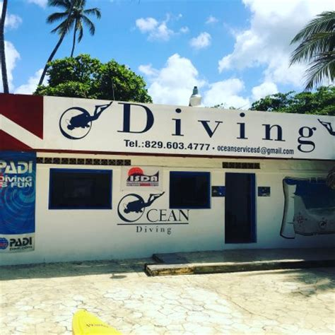 kviar hamaca casino ocean diving boca chica dominican republic top tips
