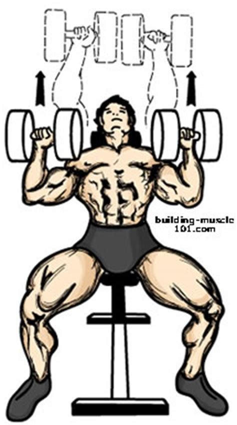 alternative exercise to bench press the dumbell incline bench press